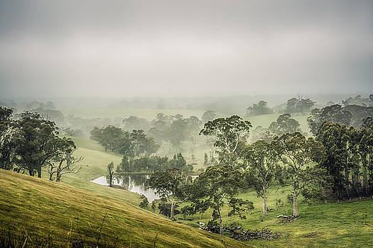 Mist Valley by Ray Warren