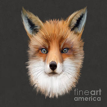 Mister Fox by John Edwards