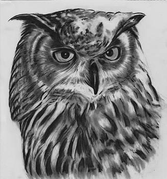 Mister Owl by Barb Baker