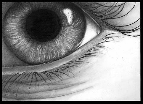 Mistif-Eye by Alycia Ryan