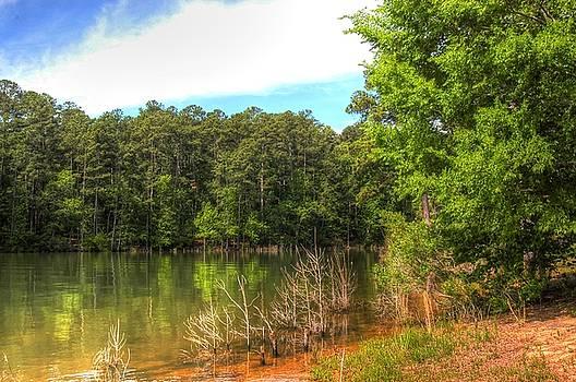 Mistletoe Lake01 by Donald Williams