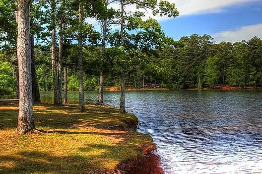 Mistletoe Lake02 by Donald Williams