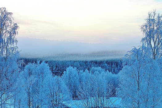 Mists are rising from frost covered trees by Ulrich Kunst And Bettina Scheidulin