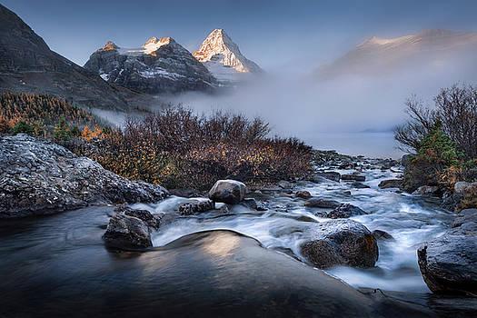 Mists of Magog by Adam Gibbs