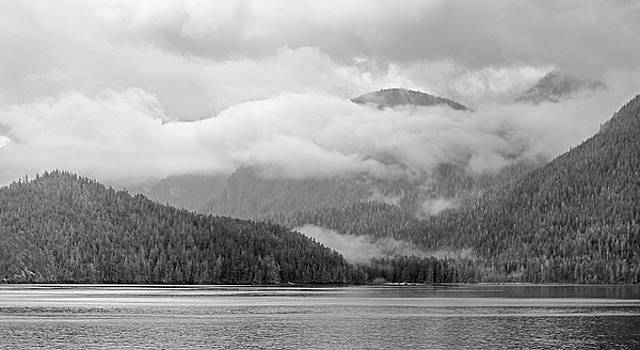 Mists over the Tongass by Peter J Sucy