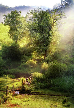 Misty Afternoon by Earl Carter