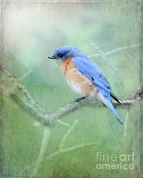 Misty Blue by Betty LaRue