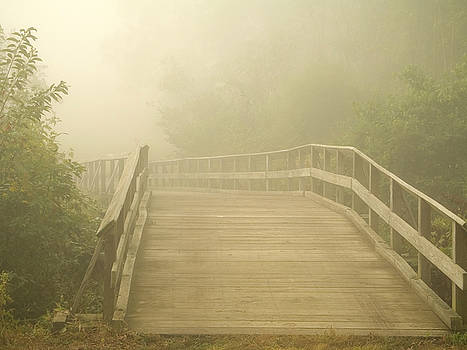 Misty Bridge by Andrew Kazmierski