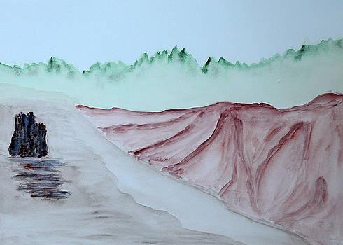 Misty Coast by Lisa Von Biela