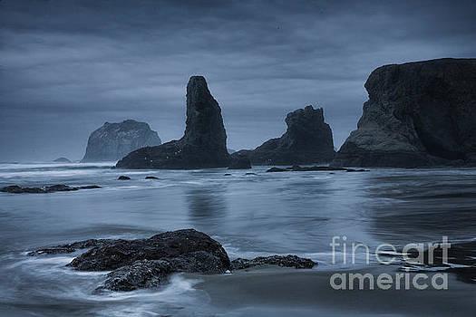 Misty Coast by Timothy Johnson