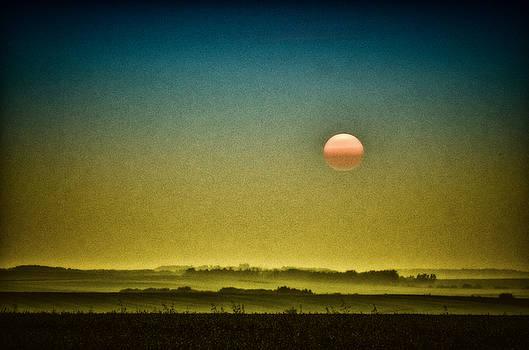 Misty Fields by Richard Espenant