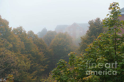 Misty Foliage from my Window by Judith Sweeney