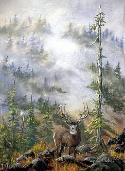 MIsty Forest with Mule Deer by Lynne Parker