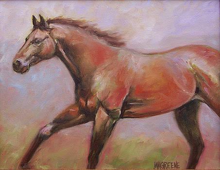 Misty Gallop by Margi Greene