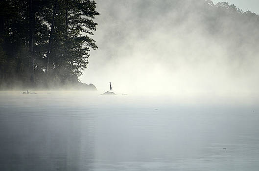 Misty Heron by Charles Bacon Jr