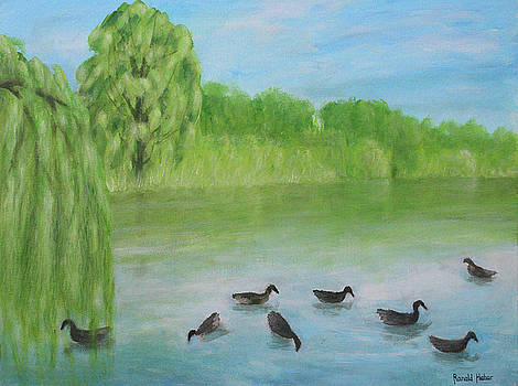 Misty Lake - Knutsford by Ronald Haber