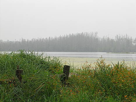 Misty Lake by Marilyn Smith
