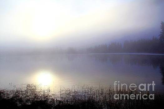 Roland Stanke - Misty Lake