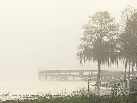 Misty Lakeside Dock by John Eide