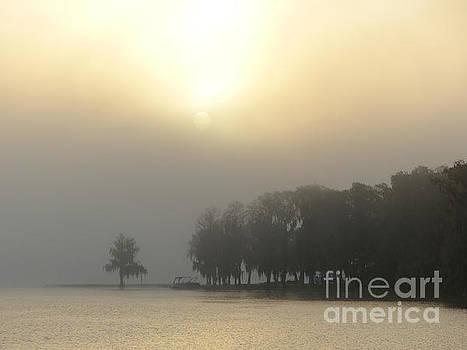 Misty Lakeside Morning by John Eide