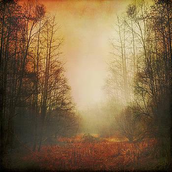 Misty Meadow in Fall by Dirk Wuestenhagen