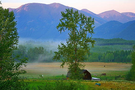 Misty Montana Evening by Patricia Haynes