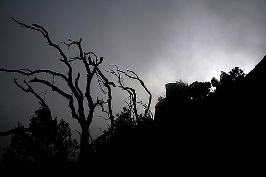 Misty Montserrat by Jason Hochman