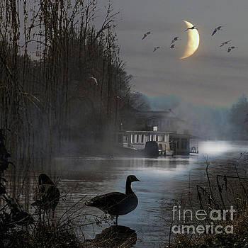 Misty Moonlight by LemonArt Photography