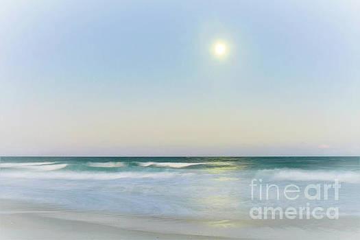 Misty Moonrise by Kelly Nowak