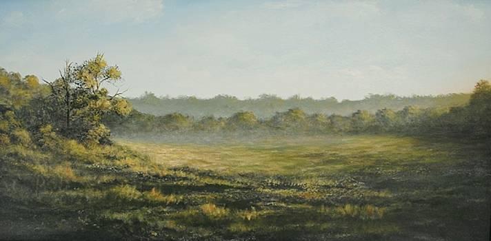 Misty Morning by Alan Zawacki