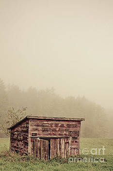 Misty morning around an old wooden shed by Edward Fielding