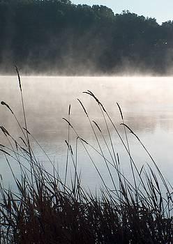 Misty Morning at Beaver Dam by Denise   Hoff