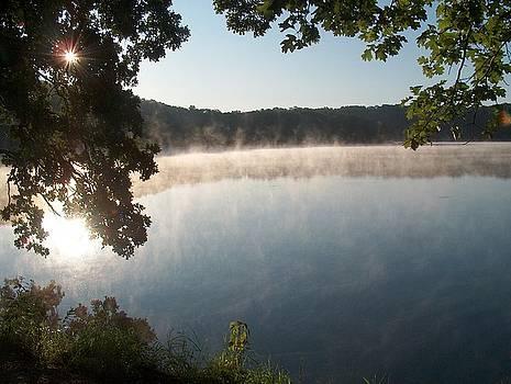 Misty Morning at Beaver Dam State Park by Denise   Hoff