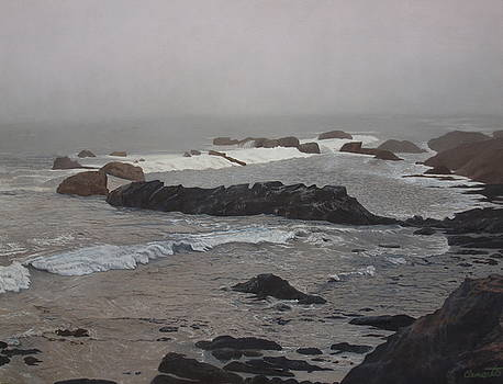 Misty morning at Ragged Point, California by Barbara Barber