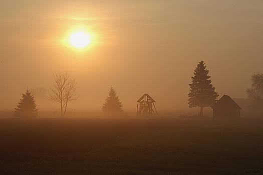 Misty Morning by Greg Taylor