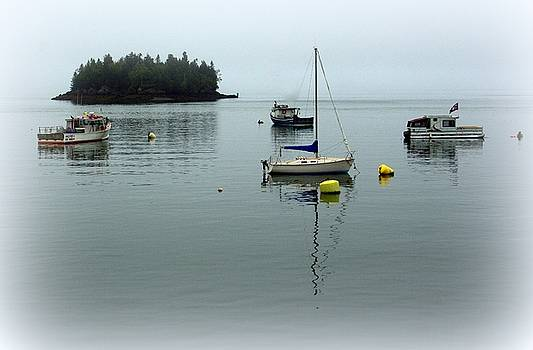 Misty Morning in Maine by Suzanne DeGeorge