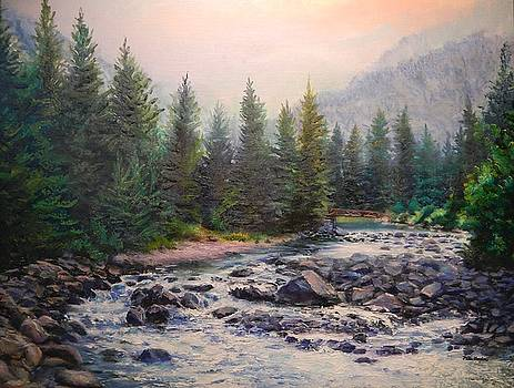 Misty Morning on East Rosebud River by Patti Gordon