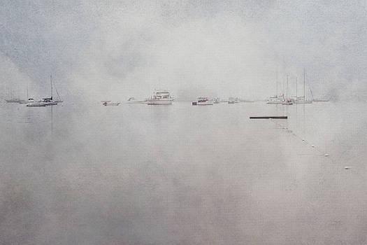 Joann Vitali - Misty Morning on the Coast - Acadia National Park - Maine