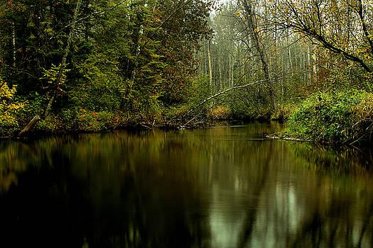 Matthew Winn - Misty Morning on the Rifle River