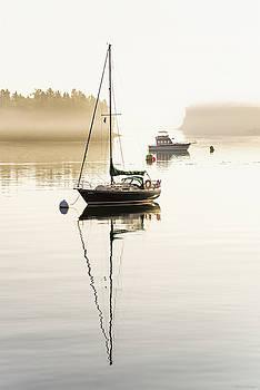 Misty Morning Stillness by Marty Saccone