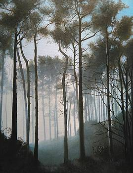 Misty Morning Walk by Caroline Philp