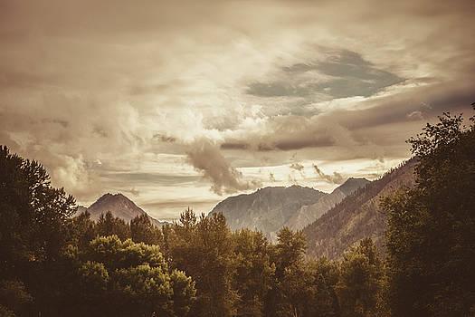 Misty Mountain Morning by Debi Bishop