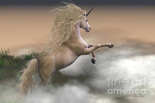 Corey Ford - Misty Mountain Unicorn