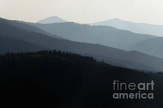 Misty Mountains In Carpathians Dawn by Michael Lesiv