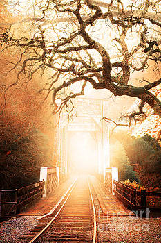 Wingsdomain Art and Photography - Misty Old Railroad Bridge at Near Historic Niles 7D10745