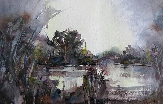 Misty Pond by Geni Gorani