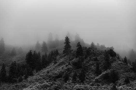 Misty Rain BW by Mitch Johanson