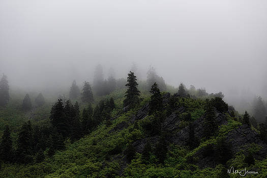 Misty Rain by Mitch Johanson