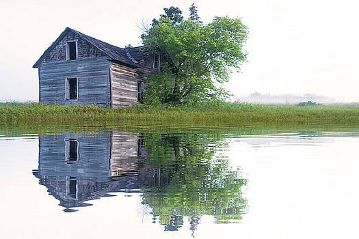 Misty Reflection by Nebojsa Novakovic