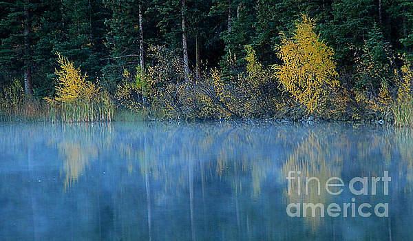Roland Stanke - Misty Reflections